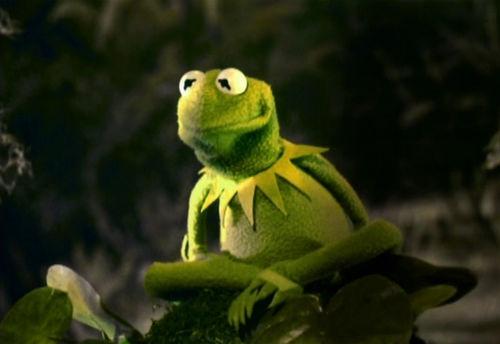 Kermit the Frog Green