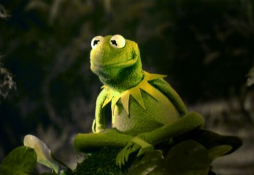Kermit the Frog Green
