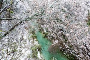 TX_Icestorm_6