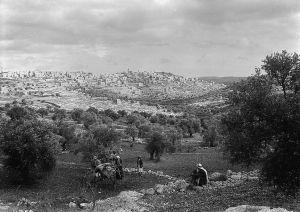 Bethlehem Hills