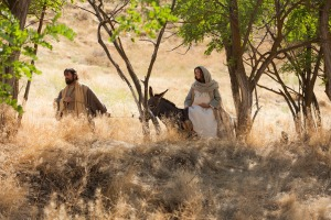Mary and Joseph travel to Bethlehem II